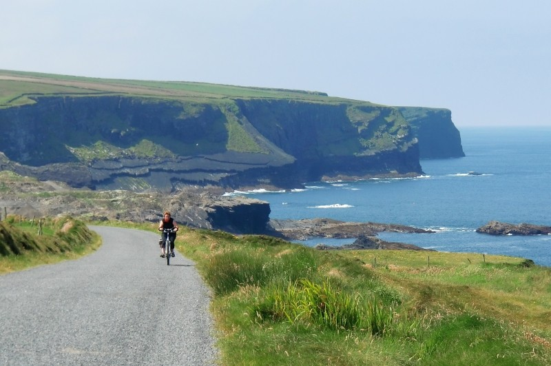 Cliffs of Kilkee and Bridges of Ross Half-Day Tour