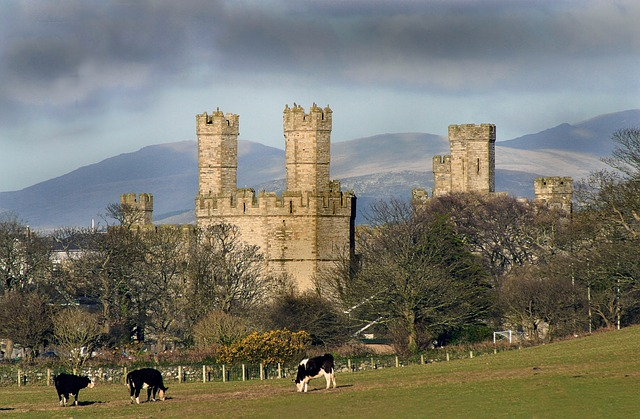 North Wales Region Full-Day Tour